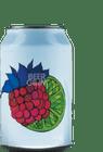 Fermenterarna SurSalt Hallon, Lime & Ingefära