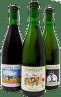 Cantillon Bundle - VGK